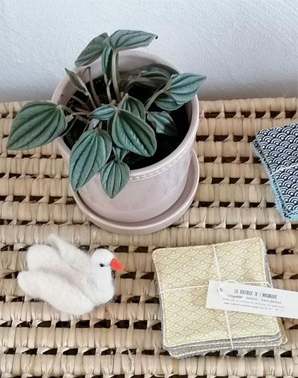 Cotons lavables Lyon eco responsable